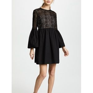 Endless Rose Black Lace Mini Dress